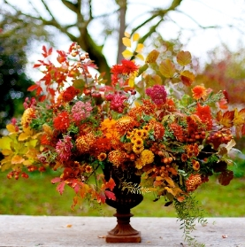 AUTUMNAL Florist's Choice Bouquet